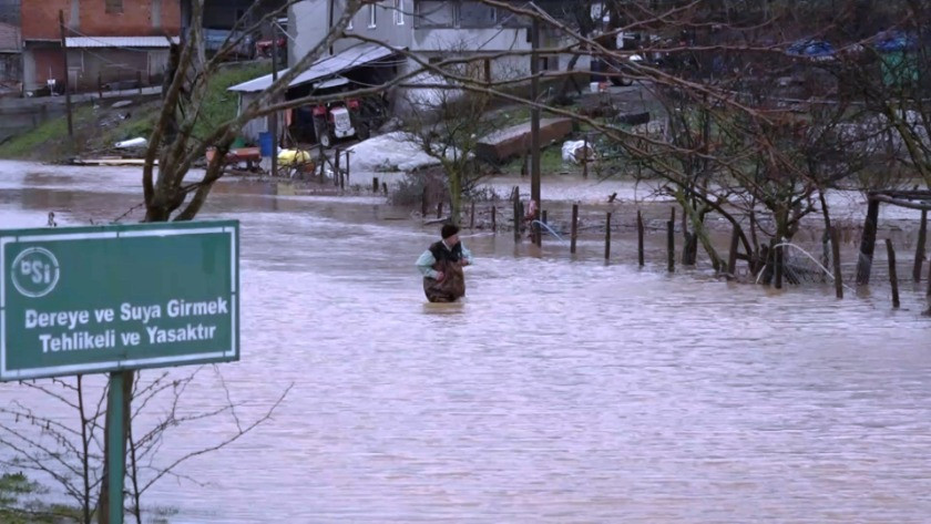Sakarya Karasu'da dere taştı; mahalleyi su bastı