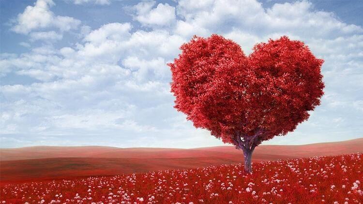 Sevgililer Günü nasıl ortaya çıktı? Sevgililer günü nedir ? - Sayfa 2