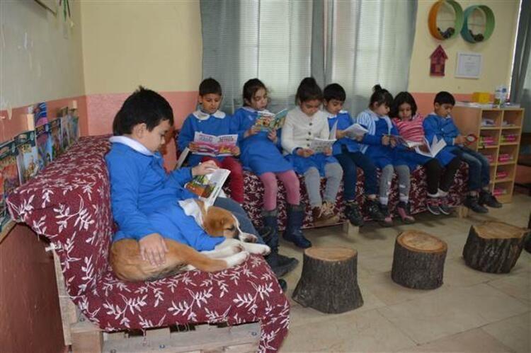 Mezarlıkta bulunan yavru köpek okulun maskotu oldu... Önlük giyip derslere katılıyor - Sayfa 4
