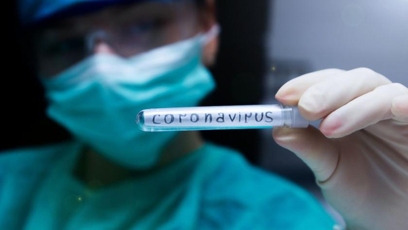 Korkutan koronavirüs araştırması!