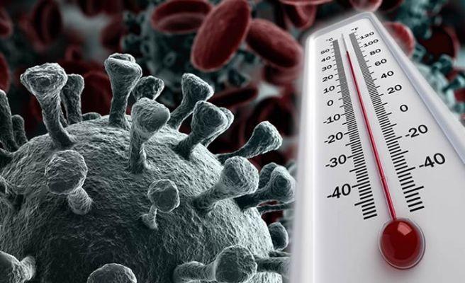 Korona virüsün yaşadığı sıcaklık derecesi ortaya çıktı! - Sayfa 2