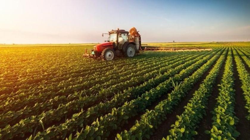 Bakanlık'dan çiftçiye büyük hibe desteği! İşte hibe yapılacak o  iller ve detaylar