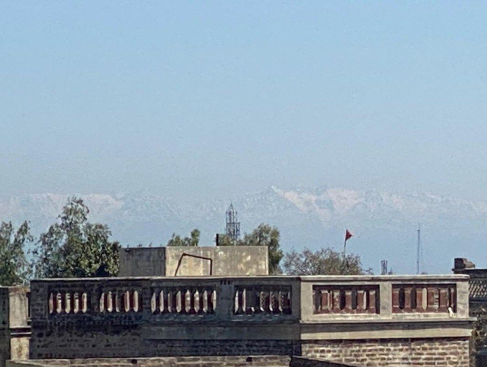 Himayala dağları karantinadayken 30 yıl sonra tekrar görüldü! - Sayfa 4