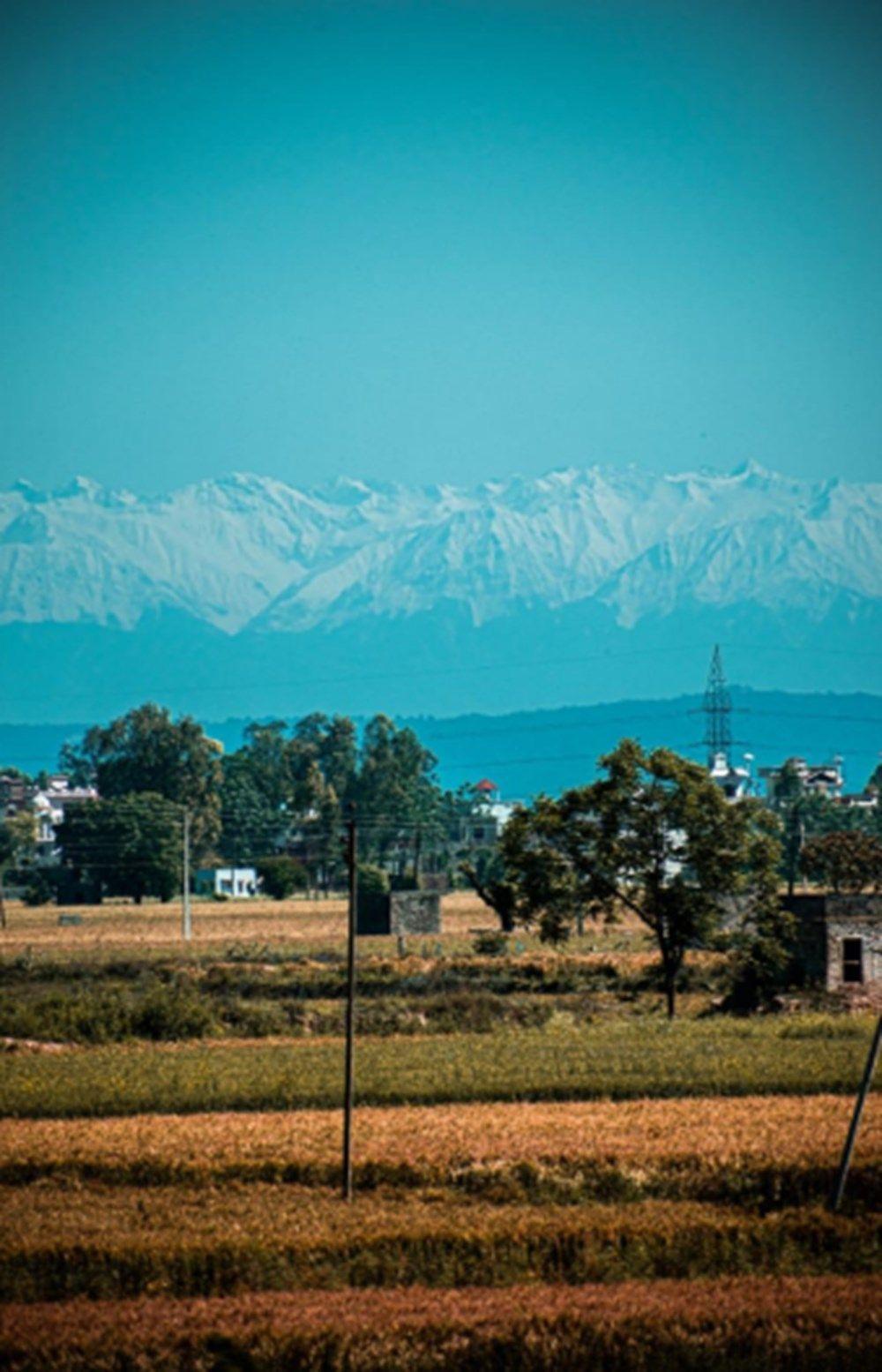 Himayala dağları karantinadayken 30 yıl sonra tekrar görüldü! - Sayfa 1