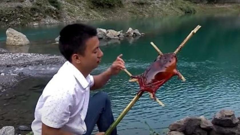 Çin'den en çok tüketilen vahşi hayvana yasak