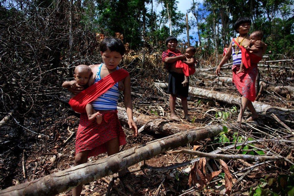 Amazon'un yanomami kabilesi altın avcıları nedeniyle tehlikede! - Sayfa 4