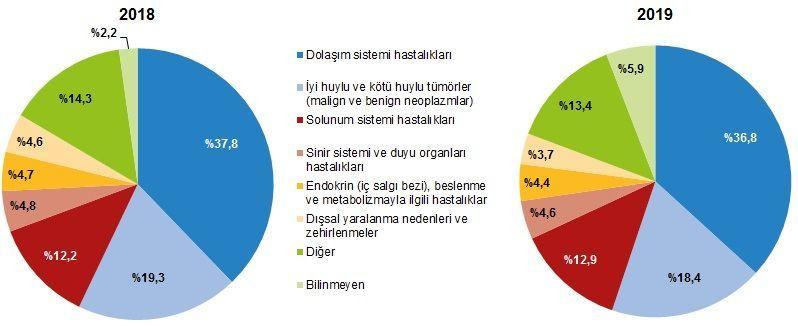 Türkiye'nin ölüm nedeni istatistikleri açıklandı! İşte o rakamlar... - Sayfa 3