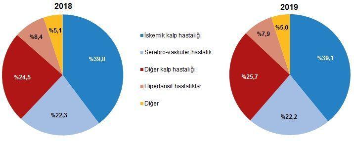 Türkiye'nin ölüm nedeni istatistikleri açıklandı! İşte o rakamlar... - Sayfa 4