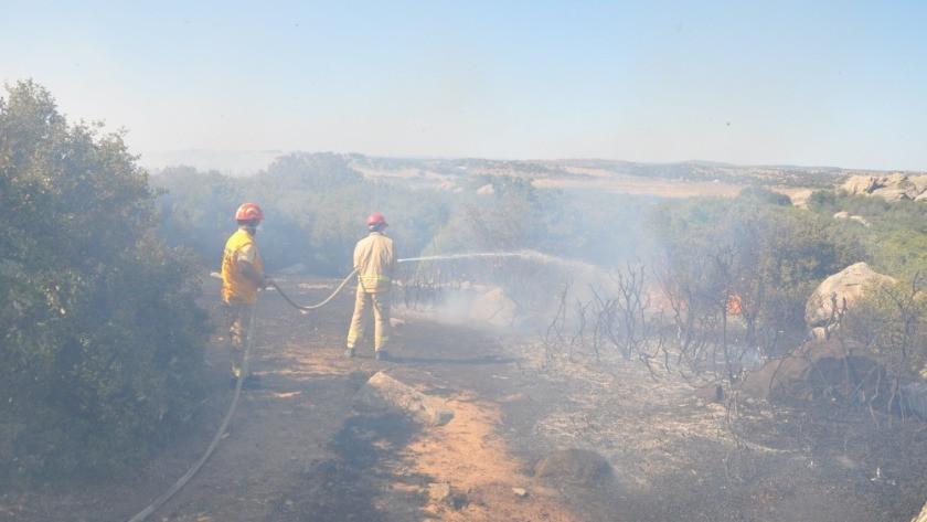Çanakkale Ezine'de makilik alanda yangın