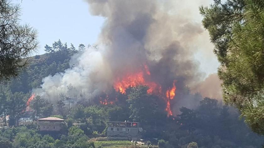 Manavgat yangınından yürek burkan haber! 2 işçi yanarak can verdi!