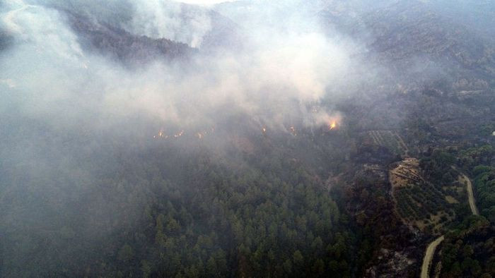 Orman yangınına havadan müdahale yeniden başladı! - Sayfa 3