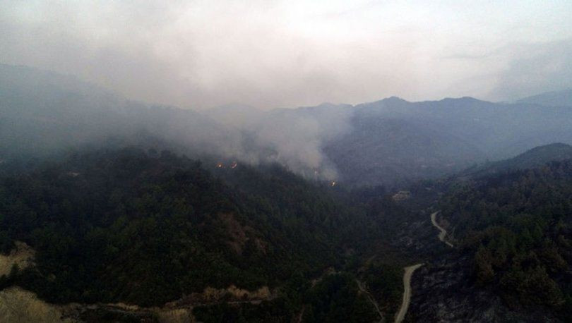 Orman yangınına havadan müdahale yeniden başladı! - Sayfa 1