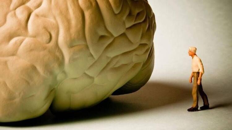 Bugün Dünya Alzheimer Günü -Alzheimer nedir? Alzheimer evreleri nelerdir - Sayfa 1