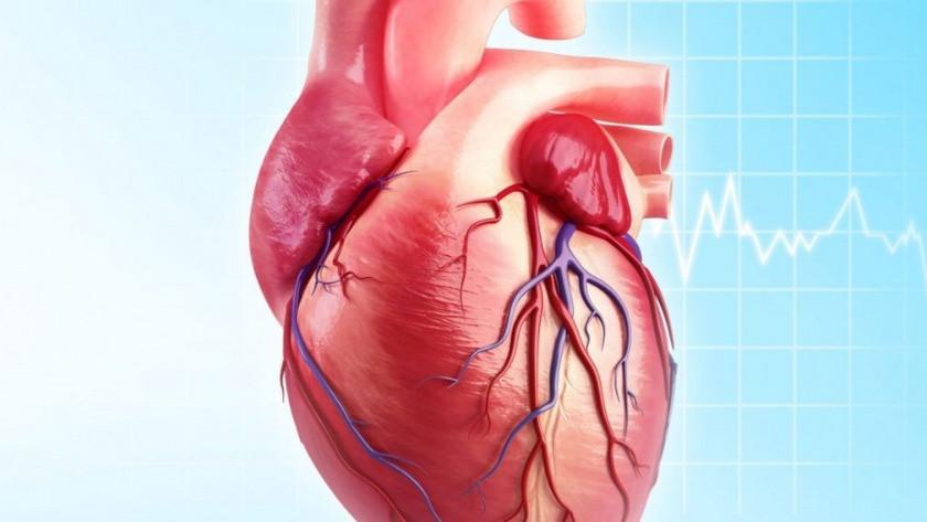 Kalbi korumak mümkün yapmanız gerekenler nelerdir?