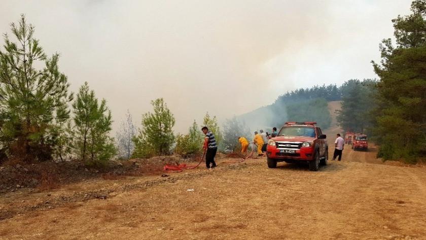 Hatay'da ciğerlerimiz yanarken Kahramanmaraş'ta 4 ayrı noktada yangın