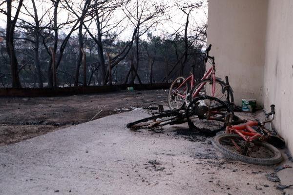 Hatay'daki yangının ardından kahreden görüntüler ortaya çıktı - Sayfa 3