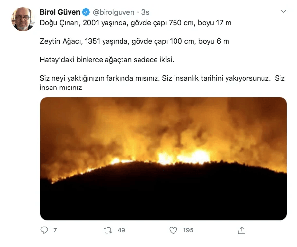 Ünlüler PKK'ya Hatay yangını için ateş püskürdü! - Sayfa 4
