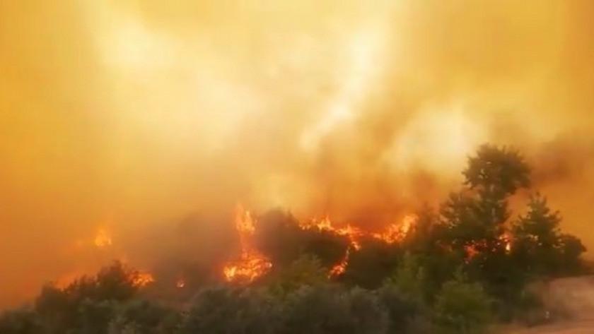 Hatay'ın İskenderun ilçesinde çıkan orman yangını yeniden alevlendi