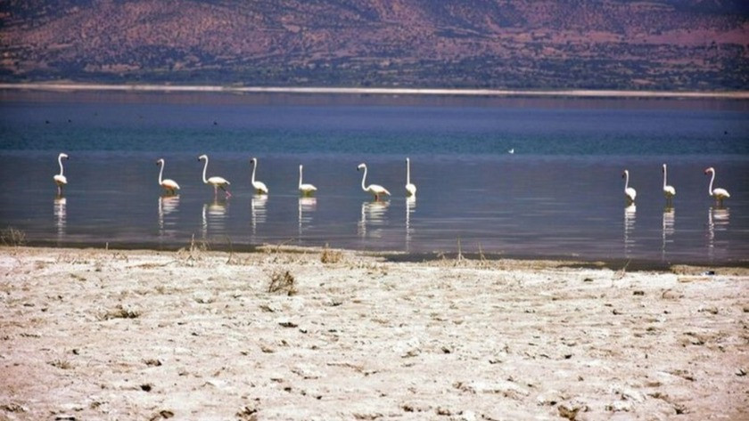 Burdur Gölü'nün suyu çekildi, iskele ortada kaldı