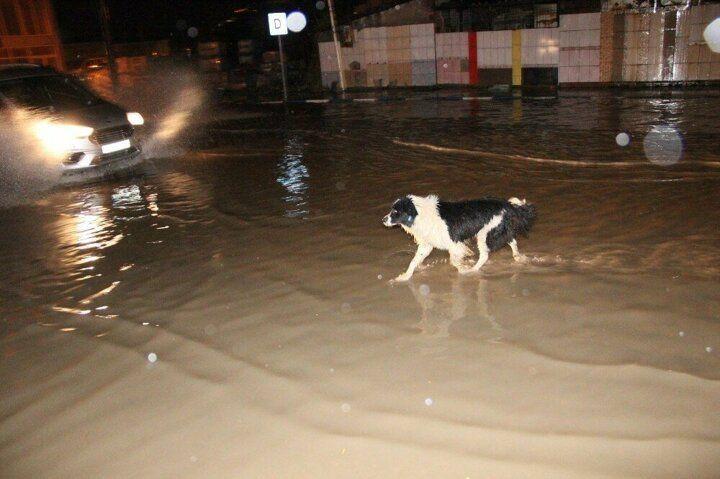 Manisa'da sağanak yağış cadde ve sokakları göle çevirdi! - Sayfa 1