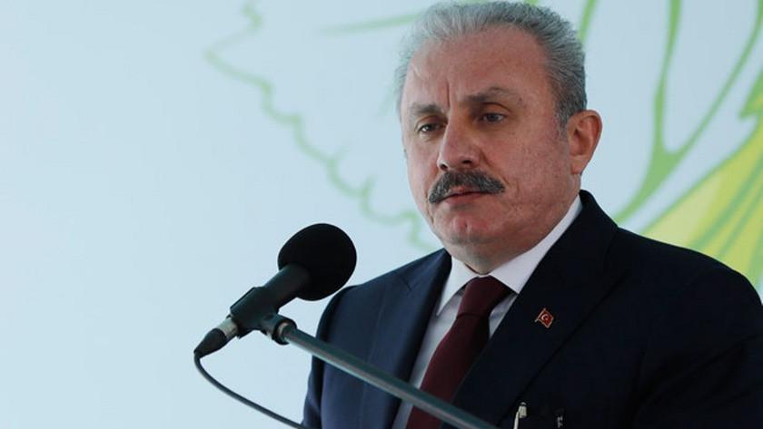 Mustafa Şentop Selçuk Özdağ'a saldırıyı kınadı