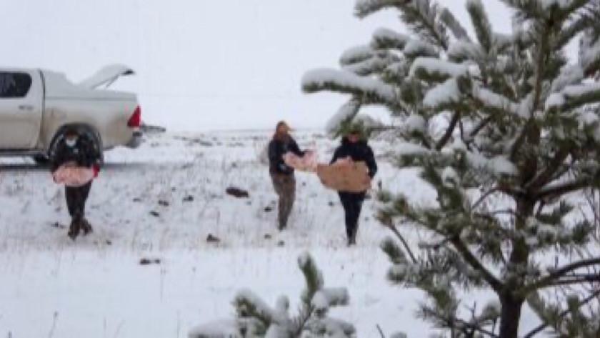 Mardin-Midyat yolunda karda araçlar mahsur kaldı