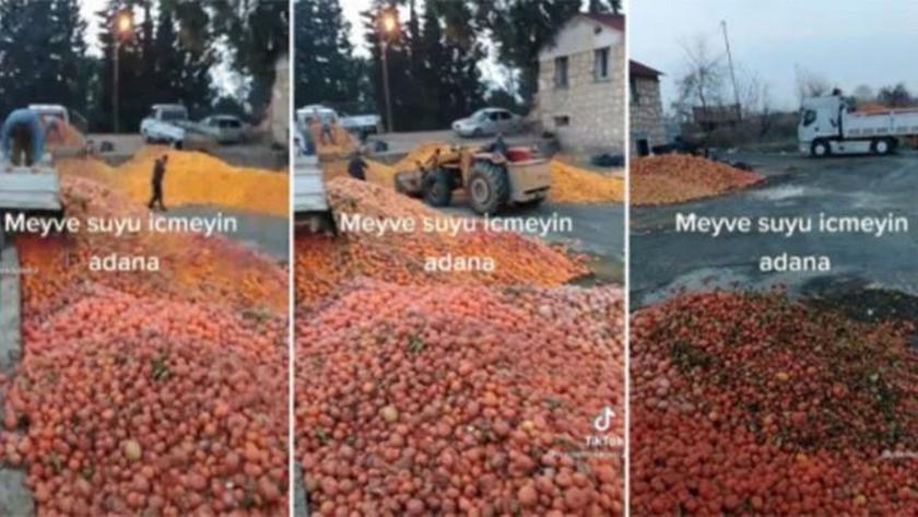 Çürümüş portakalları meyve suyu için kepçeyle tesise taşıdılar