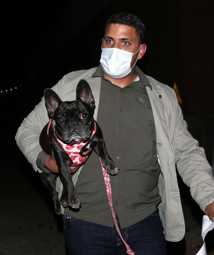 Lady Gaga'ya büyük şok! Silahlı saldırı sonrası köpekleri çalındı - Sayfa 3