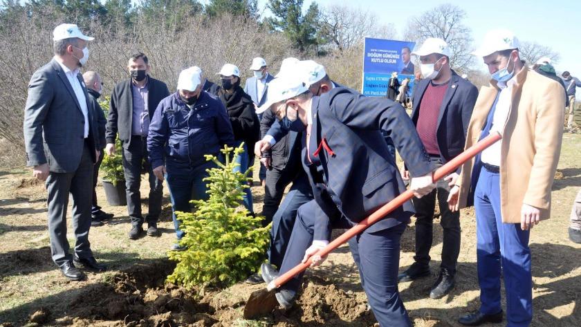 Erdoğan'ın doğum gününde 'hatıra ormanı' oluşturuldu