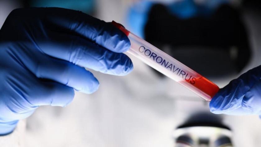 Mutasyonlu korona virüs belirtileri nelerdir? İşte gün gün mutasyonlu koronavirüsün belirtileri