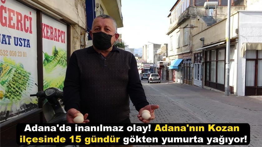 Adana'nın Kozan ilçesinde 15 gündür gökten yumurta yağıyor!
