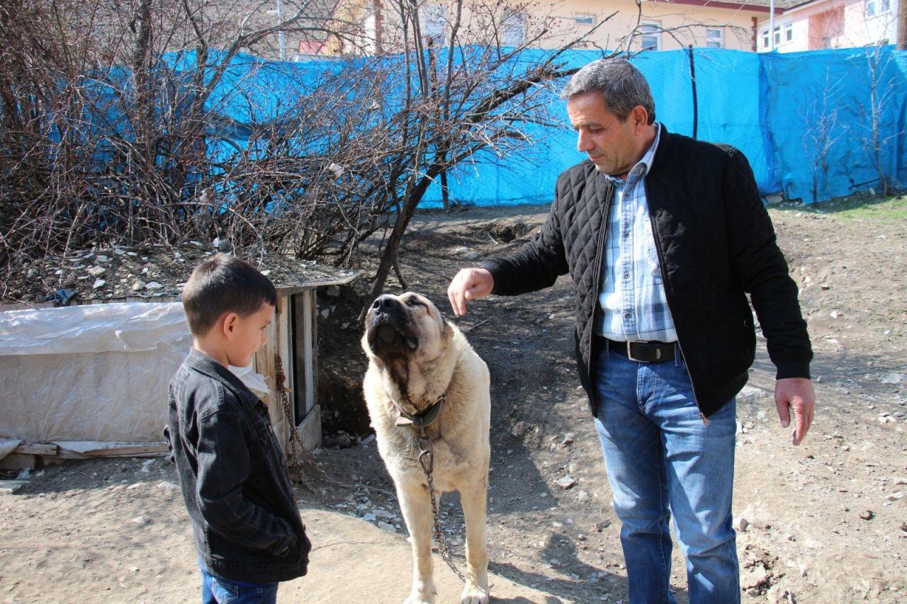 """Konuşan köpeği duyanlar kulaklarına inanamadı! Köpek dile geldi; """"Benim adım Ejder"""" diyor! video - Sayfa 4"""