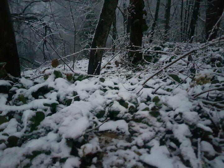 İstanbul'da kar kapıya dayandı! Yüksek kesimlerde kar yağışı başladı! - Sayfa 4