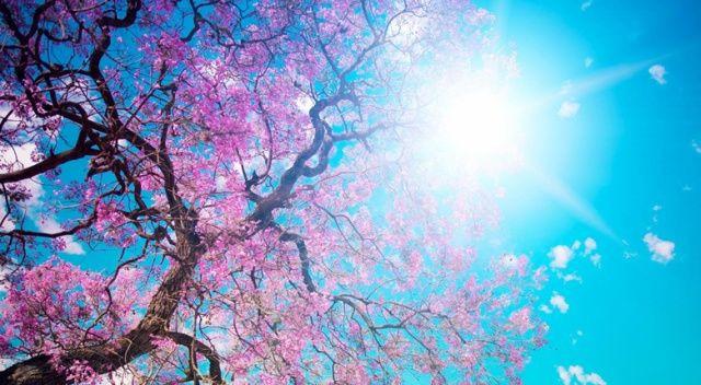 Sıcaklıklar artıyor! Bugün hava nasıl olacak? Meteoroloji'den 27 Nisan il il hava durumu tahminleri - Sayfa 2