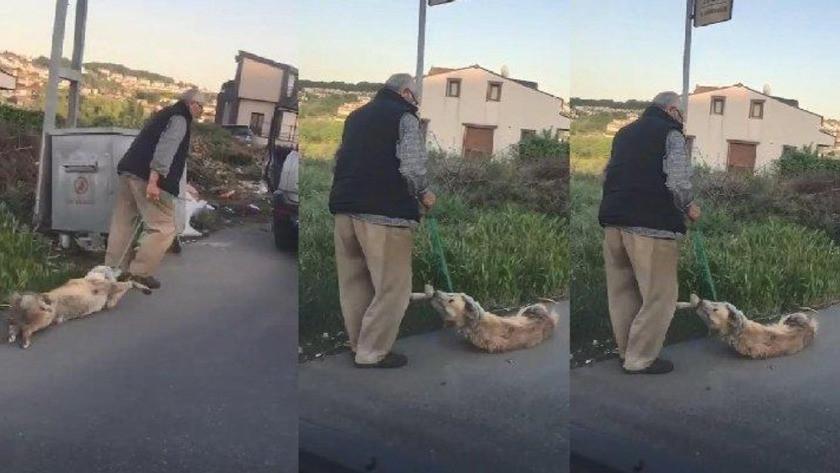 Vahşetin böylesi! Köpeğini boğazından iple bağlayarak çöpe attı