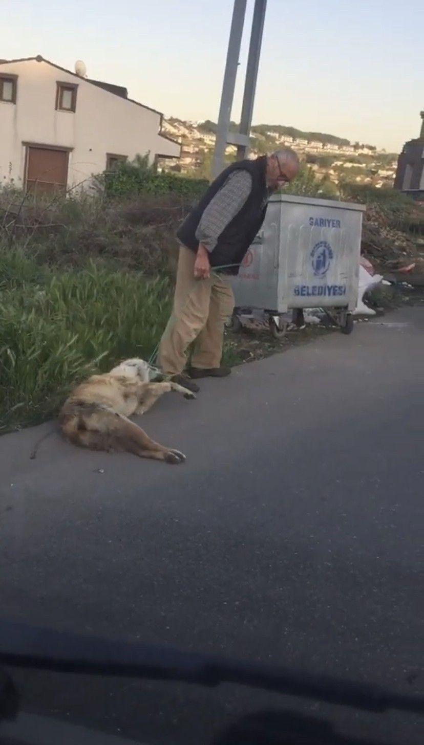 Vahşetin böylesi! Köpeğini boğazından iple bağlayarak çöpe attı - Sayfa 4