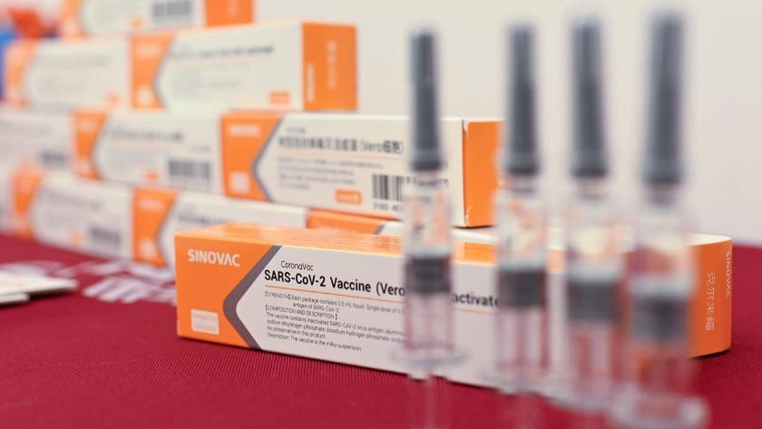 Çin'den Türkiye'ye bugüne dek gelen aşı sayısı