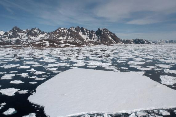 Küresel ısınma, felaketleri peş peşe getirecek - Sayfa 2