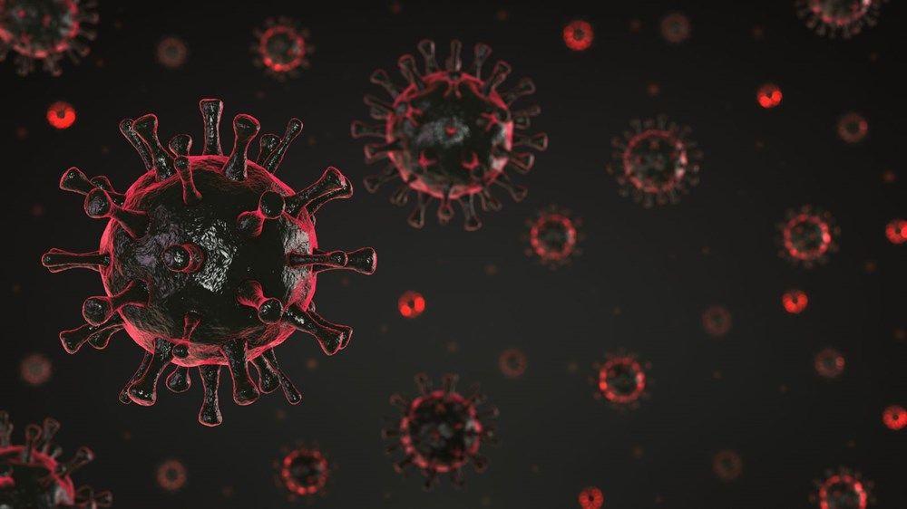 Koronavirüsün 'alfa varyantı ' nasıl bu kadar güçlendi? - Sayfa 4