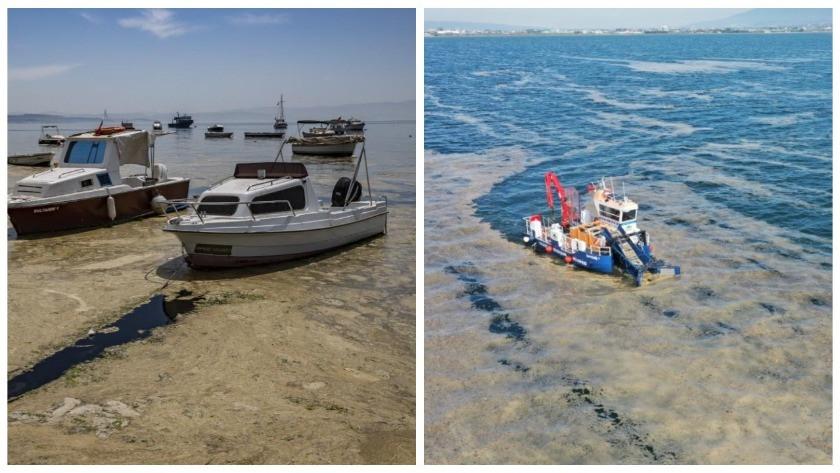 Balıkesir'e bağlı Erdek sahilli tamamen müsilaj ile kaplandı