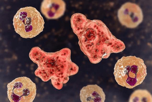 Koronavirüs bitmeden yeni virüs ortaya çıktı!  RSV'nin  belirtileri! - Sayfa 3