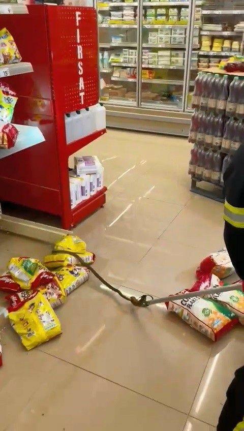 Kocaeli 'de alışveriş için gittikleri markette rafların arasından yılan çıktı! - Sayfa 3