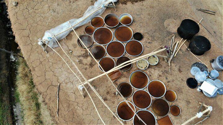 Bingöl'de üreticilerin 'tatlı' telaşı başladı: 70 hastalığa şifa oluyor - Sayfa 4