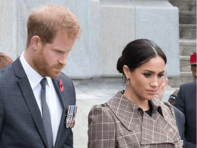 Prens Harry ve Meghan Markle çiftine çevre ödülü verildi! - Sayfa 2