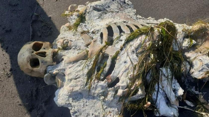 Samsun'da şok eden görüntü! İskelet sahile vurdu!