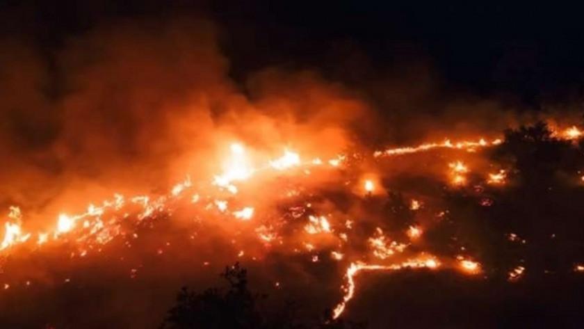 Elazığ'ın Mastar Dağı'nda çıkan yangın tekrar alevlendi!