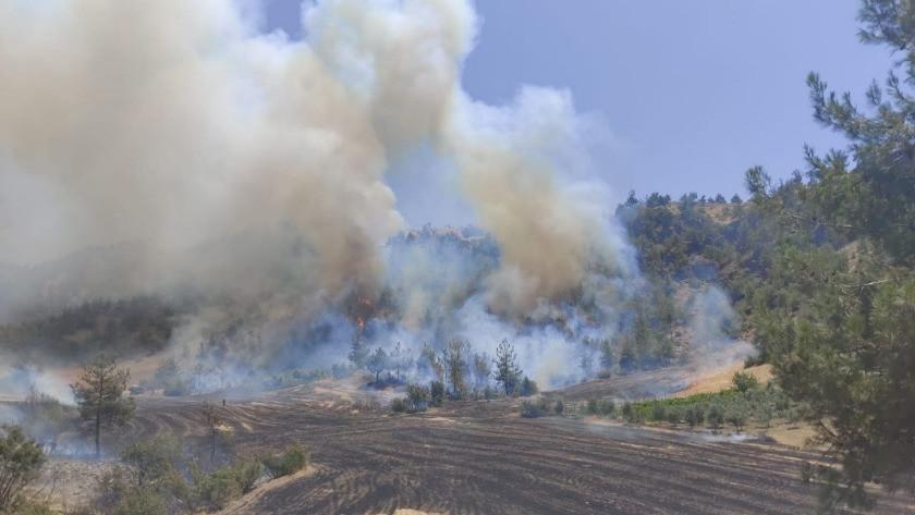 Kahramanmaraş'ta korkutan orman yangını! Söndürülemiyor!