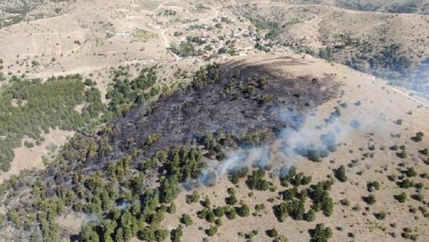 Kırıkkale'de ormanlık alanda yangın!