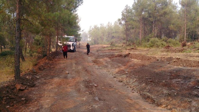 Kilis'teki orman yangını 2 buçuk saat sonra kontrol altına alındı