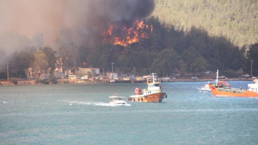 Milas ve Bodrum ilçelerindeki yangınlar kontrol altına alındı